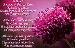 Красивый цветок в приятном оформлении