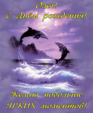 Картинка Олегу на День рождения с дельфинами в море