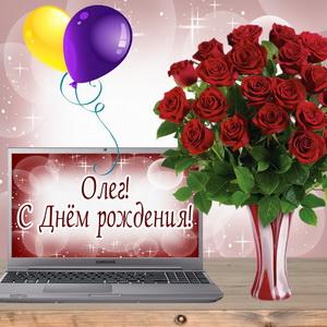 Картинка с букетом роз и шариками Олегу на День рождения