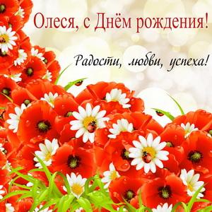 Пожелание на фоне ярких полевых цветов