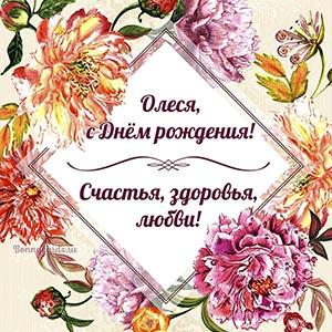 Олеся, с Днём рождения, счастья, здоровья, любви