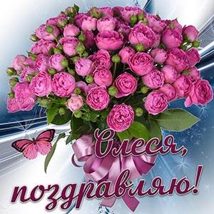 Поздравление с розовым букетом и бабочкой для Олеси