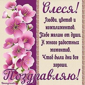 Отличная открытка с цветочками и стихами Олесе