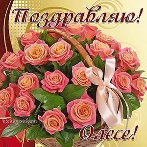 Поздравление с шикарным букетом роз и бантом Олесе