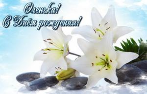 Белые цветы на камнях Оле на День Рождения