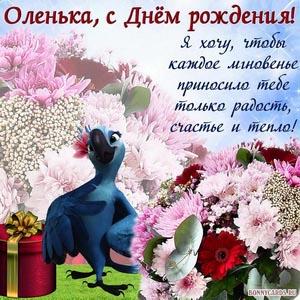 Картинка на День рождения Оленьке с попугаем и букетом