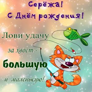 Открытка Серёже на День рождения со смешным котом