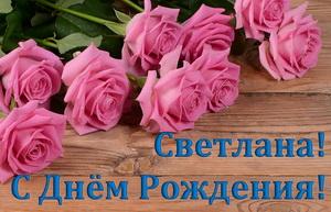 Розовые розы Светлане на День Рождения.