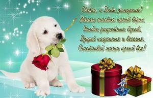 Подарки и собачка с розой для Светы.