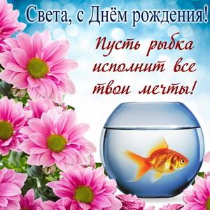 Пусть золотая рыбка исполнит все мечты