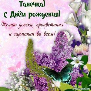 Картинка Танечке на День рождения с бабочкой и цветами