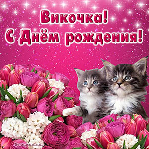 Открытка с котятами и цветами Вике на День рождения