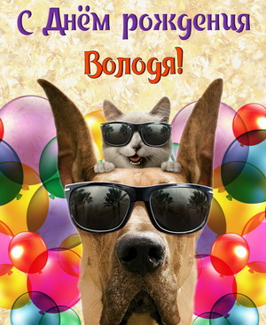 Картинка с забавными животными на День рождения Володе