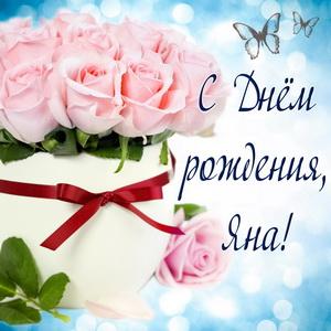 Открытка с розами Яне к Дню рождения