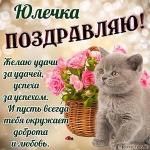Открытка с забавным котиком и поздравлением для Юлечки