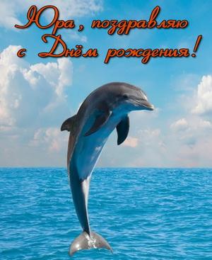 Открытка с дельфином Юре на День рождения