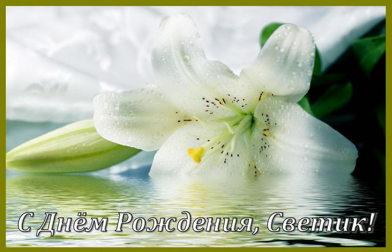 Большой белый цветок Светику на День Рождения