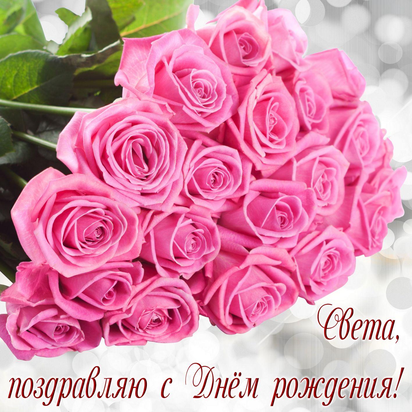 Огромный букет розовых роз для Светы