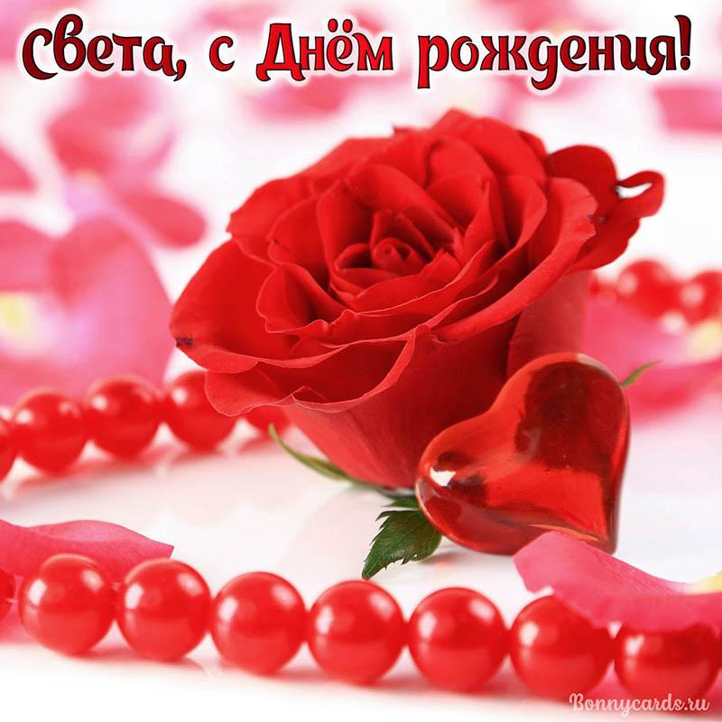 Красивая открытка Свете с Днём рождения с розочкой
