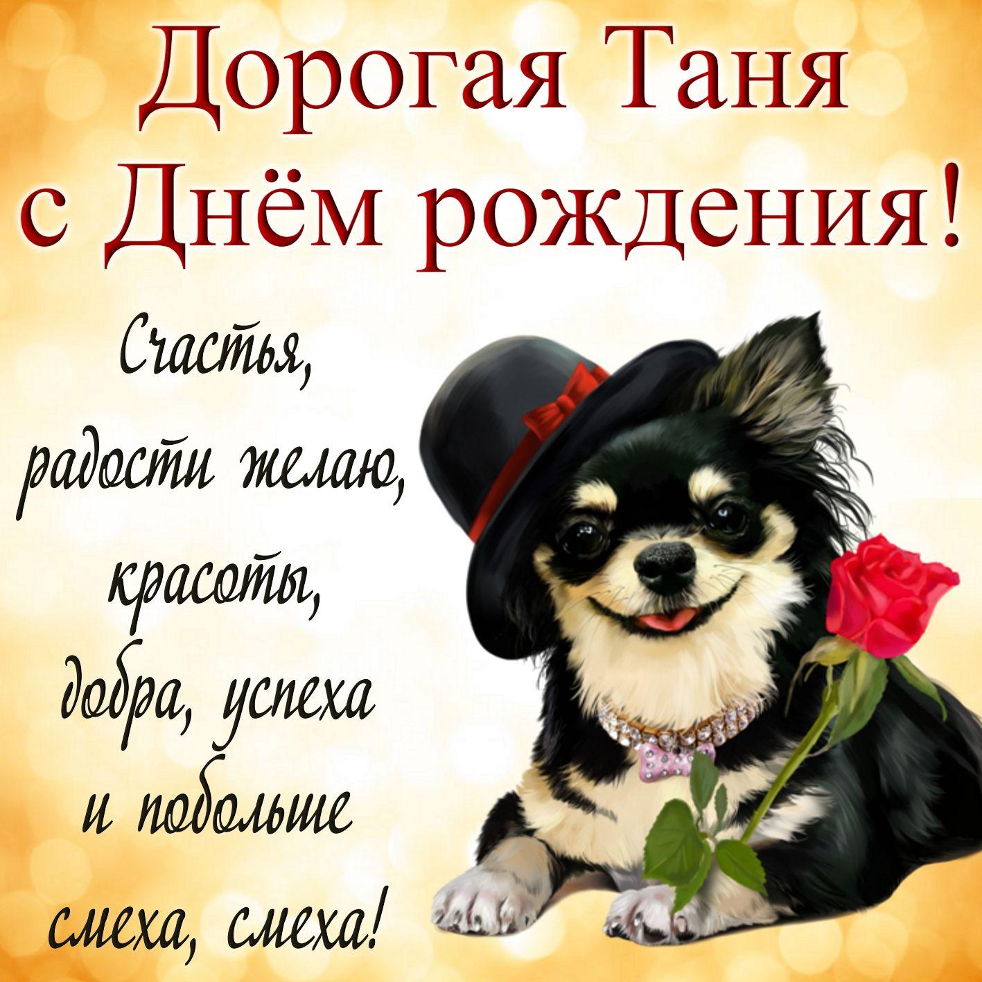 Открытка с собачкой в шляпке и розой