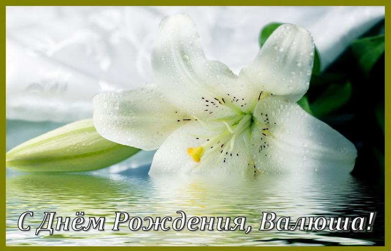 Красивый белый цветок на День Рождения Валюше