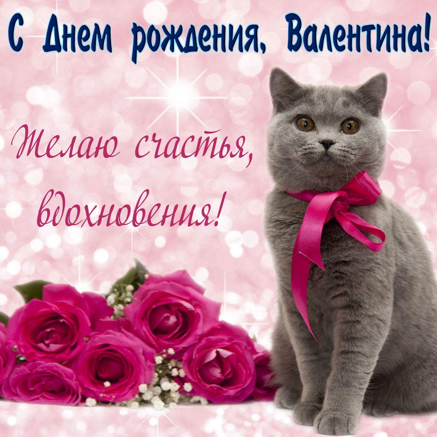 Открытка на День рождения Валентине - милый серый котик с пожеланием