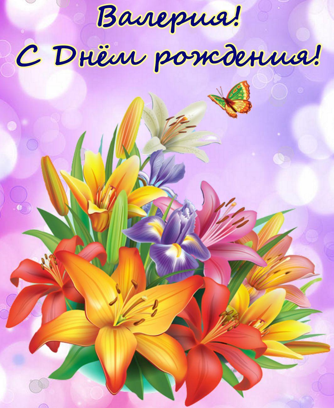 Яркие разноцветный цветы с бабочкой