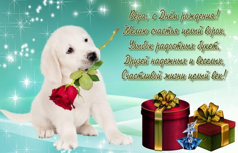 Подарки и собачка с розой на День Рождения Вере