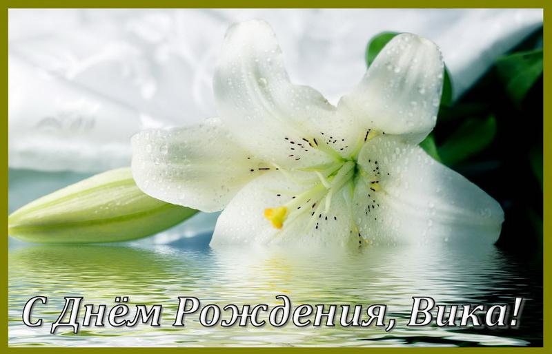 Белый цветок в воде на День Рождения Вике