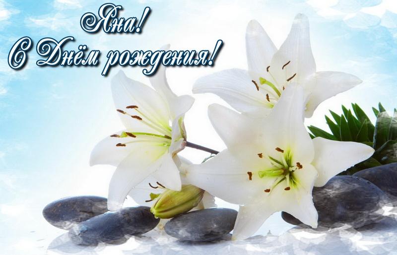 Открытка - красивые белые цветы Яне на День Рождения
