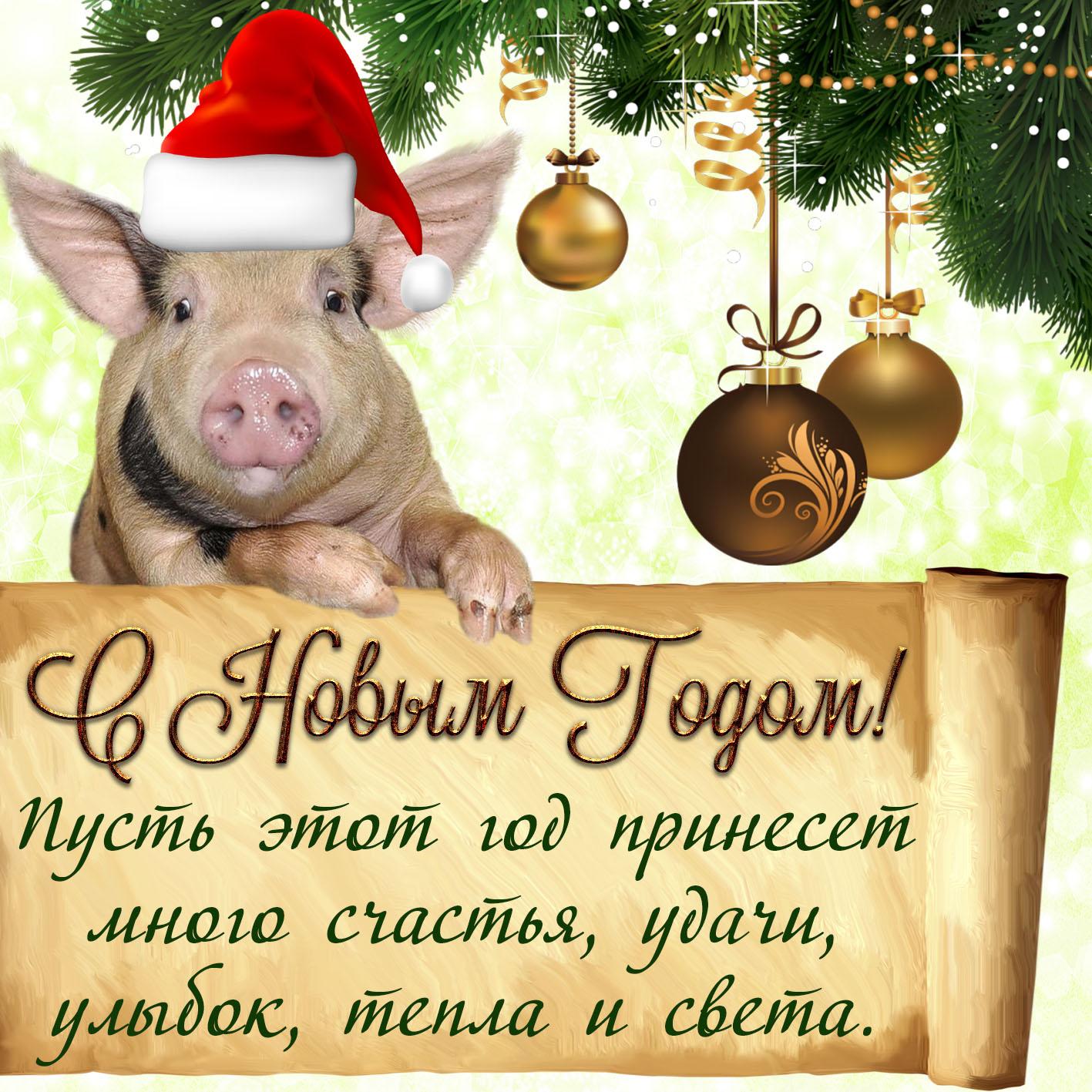 Забавная картинка со свиньей и пожеланием на Новый год