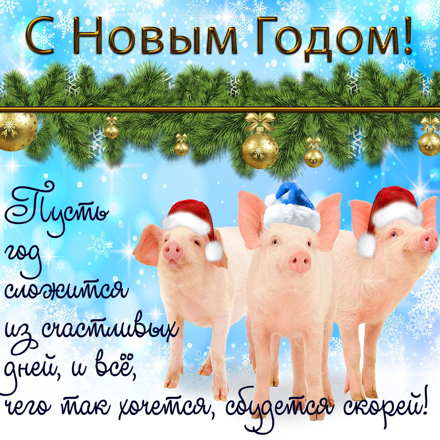 Открытка - забавные поросята поздравляют с Новым годом