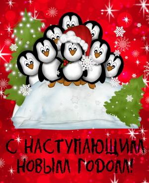 Забавные пингвинята поздравляют с Новым годом
