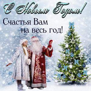 Дед Мороз и Снегурочка в заснеженном лесу