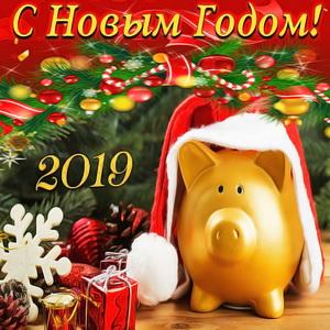 Поросёнок среди подарков к Новому году