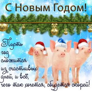 Забавные поросята поздравляют с Новым годом