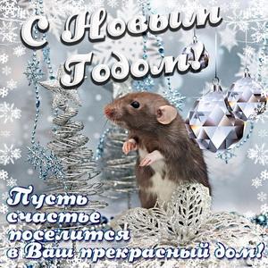 Открытка с милой крысой и поздравлением на Новый год