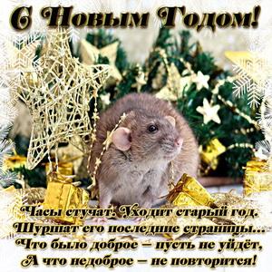 Открытка с Новым годом с миленькой крысой и пожеланием