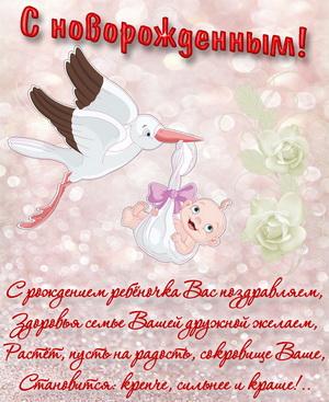 Забавный аист с новорожденной и белые розы