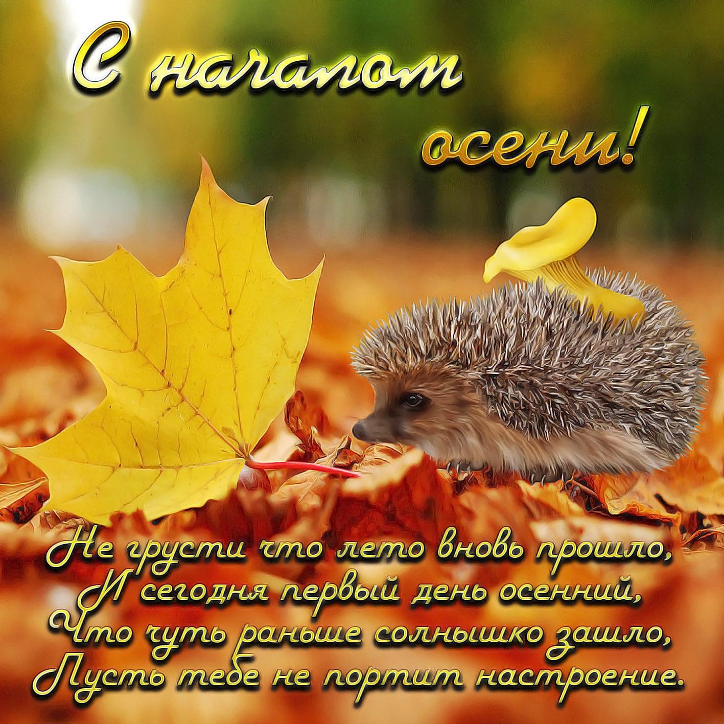 Поздравление с осенью в открытках