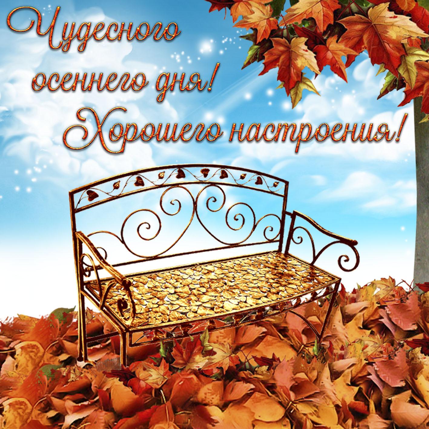 Осень открытки фото