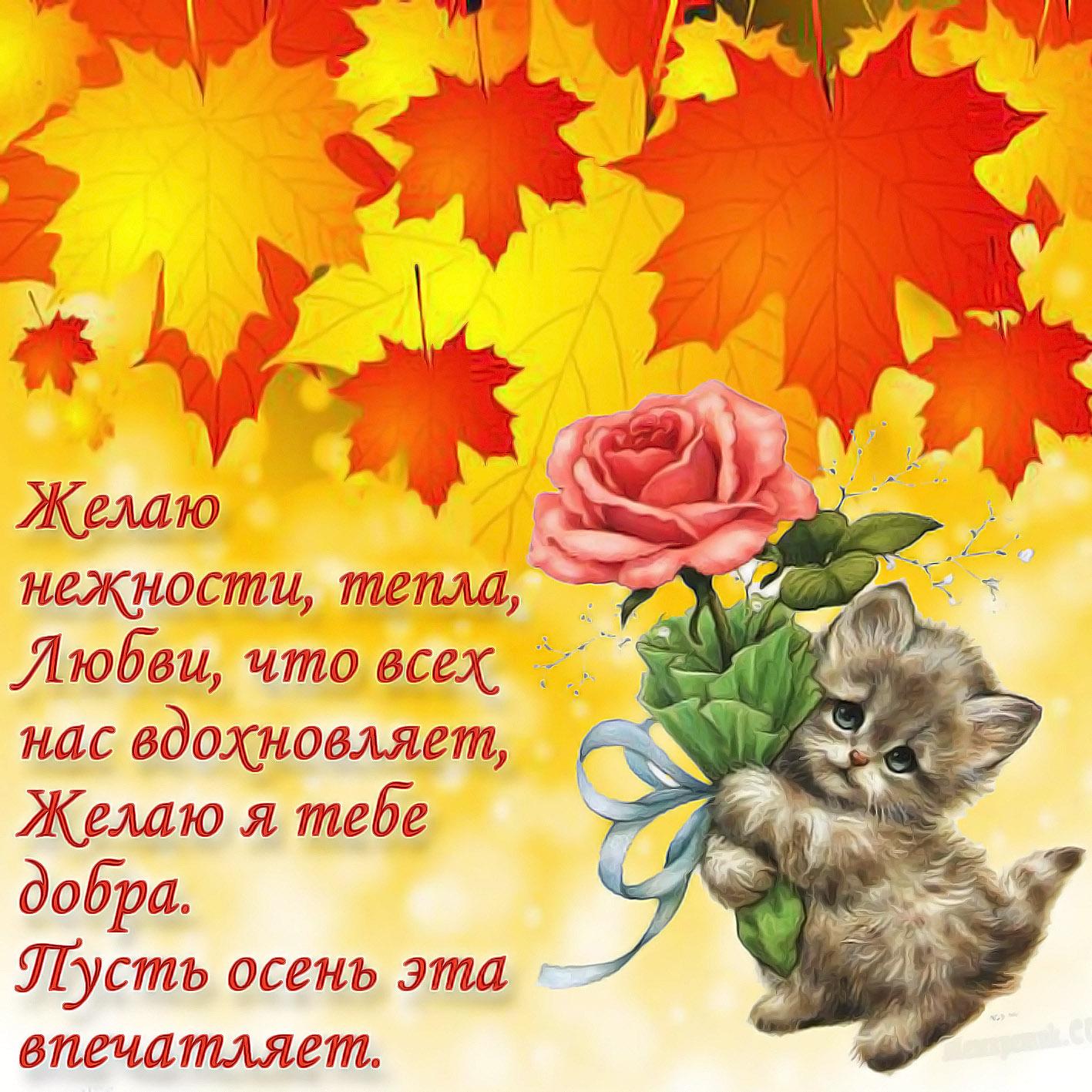 Картинки стихи доброе осень