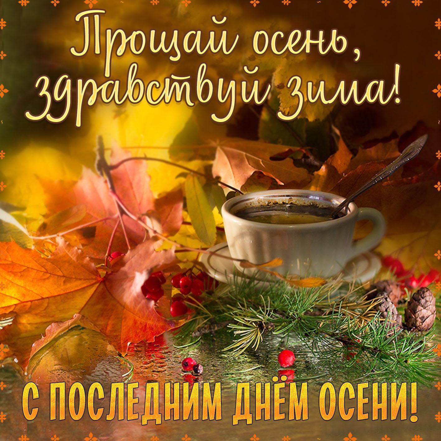 Открытка - чашка среди листьев и шишек на последний день осени