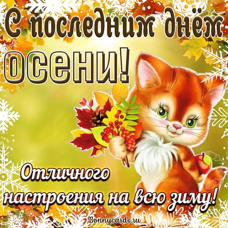 Милый котик на открытке с последним днём осени