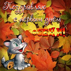 Котик поздравляет с первым днём осени