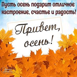 Открытка привет, осень, с кленовыми листьями