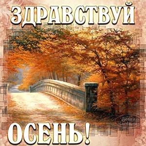 Красивая открытка со словами здравствуй, осень
