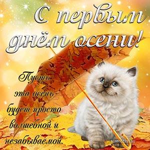 Открытка с котом под зонтиком с первым днём осени