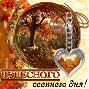 Открытка с пожеланием чудесного осеннего дня