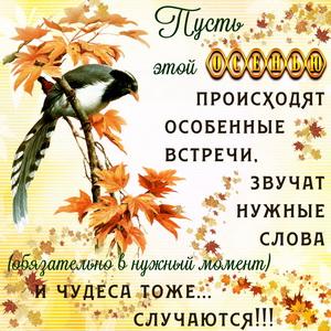 Картинка с красивым пожеланием на осень